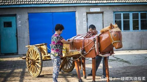 Học hết trung học cơ sở, ông Li theo cha gắn bó với nghề mộc.Năm 2008, ông bắt đầu quan tâm đến việc sản xuất trâu, ngựa bằng gỗ. Lứađầu tiên ra đời năm 2014 đã gây được tiếng vang. Tới năm 2015, ông Li được cấp bằng sáng chế quốc gia.