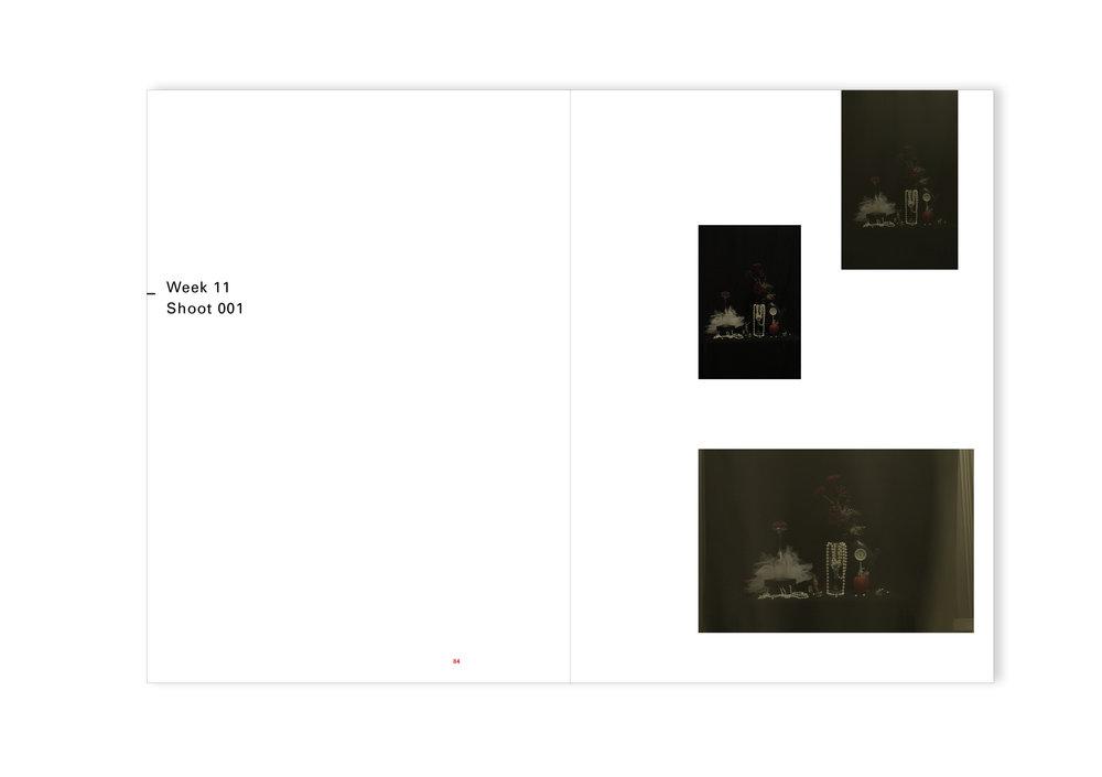 CPJ SEM 5 - super imposed843.jpg