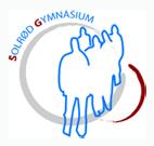 Solrød_Gym_logo.jpg