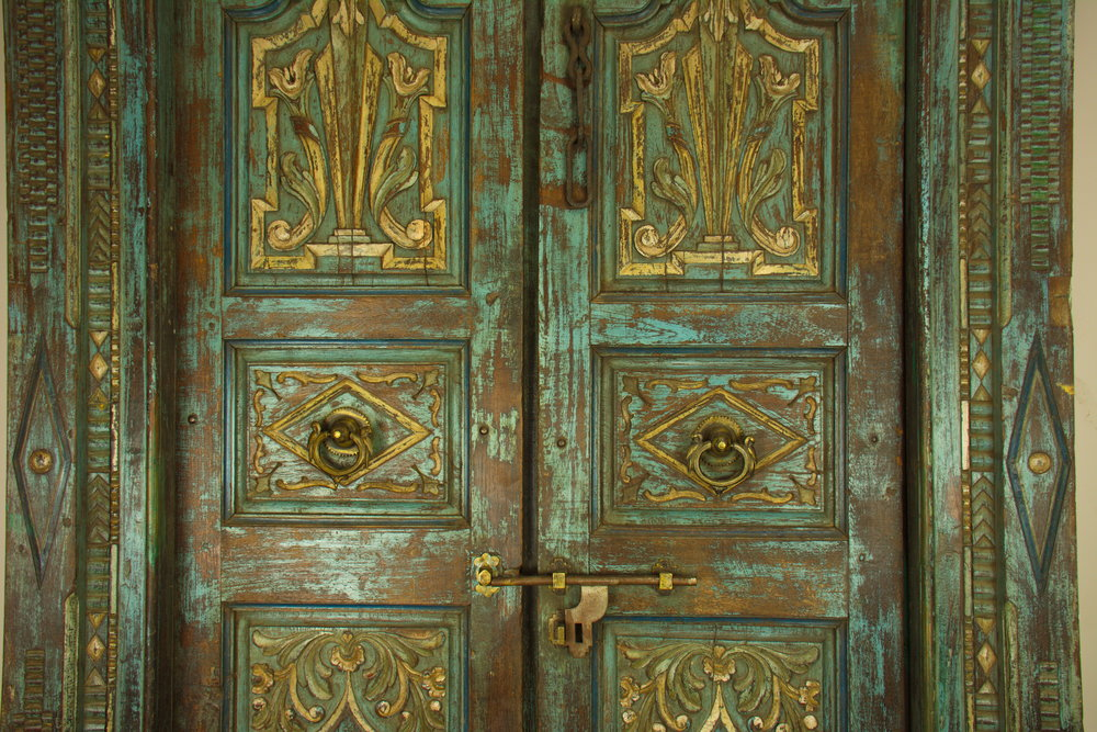 Parrot Door