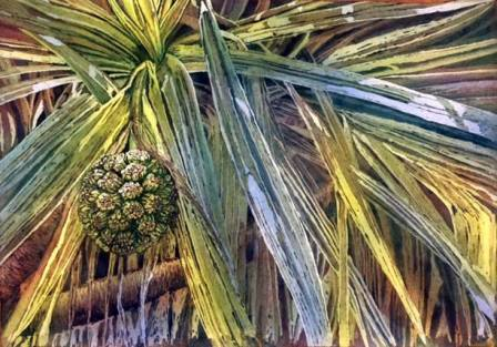 "Honorable Mention: ""Palm Seed Study"" by Donna Morrison  ""Palm Seed Study"" leads the eye to the focal point from every direction.  An original way of looking at a plant we all see everyday, the painting speaks of garden renewal."