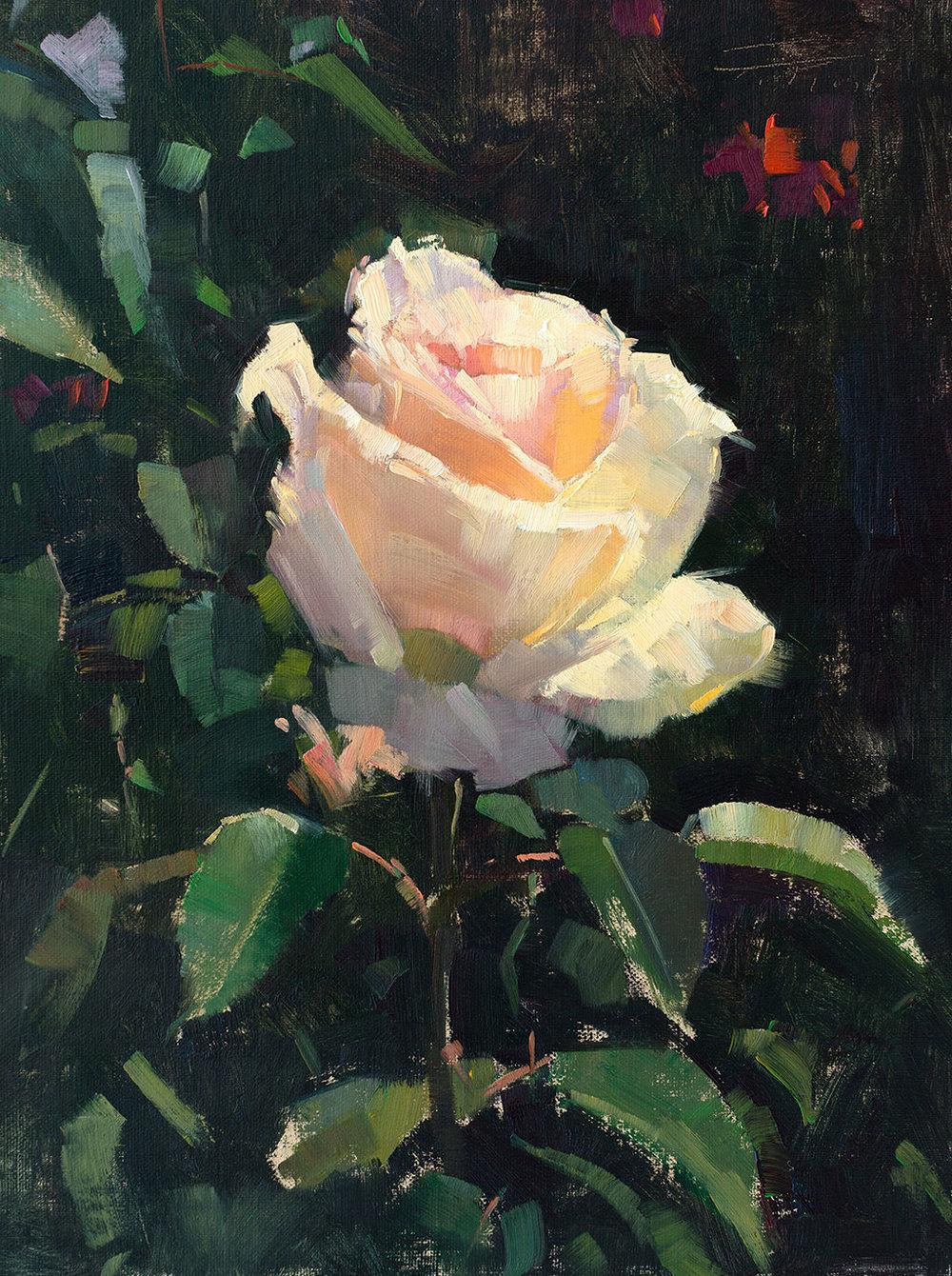 patrick-saunders-painting-floral-white-rose-aglow.jpg