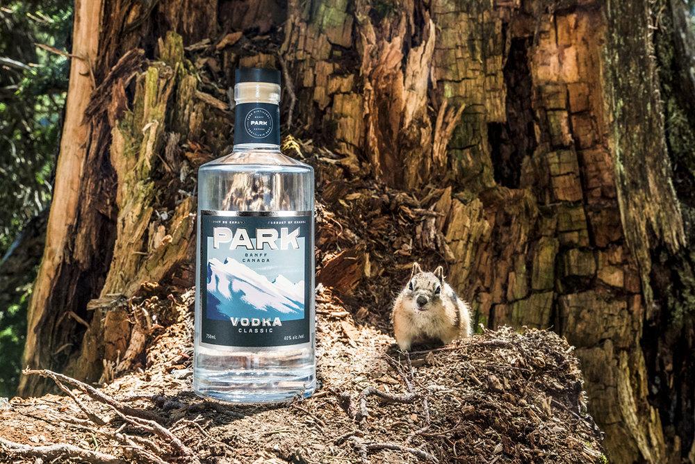 Vodka Squirrel | Photo Credit: Anna Robi