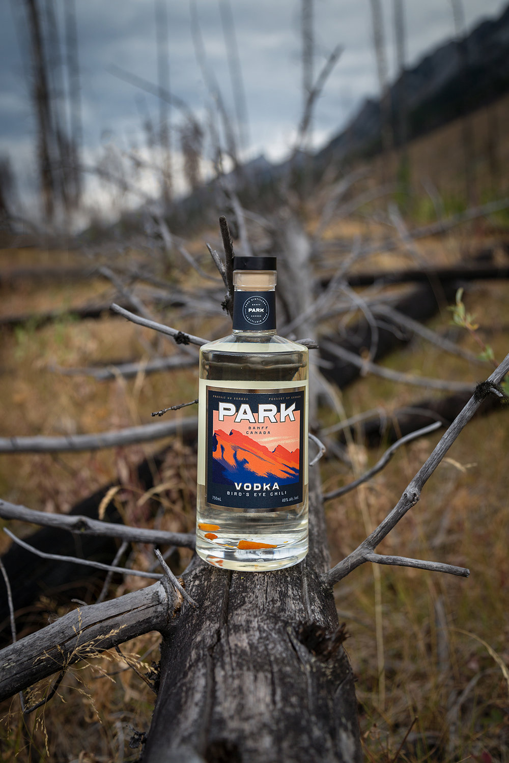 Chili Vodka Sawback Burn | Photo Credit: Lindsay Smith
