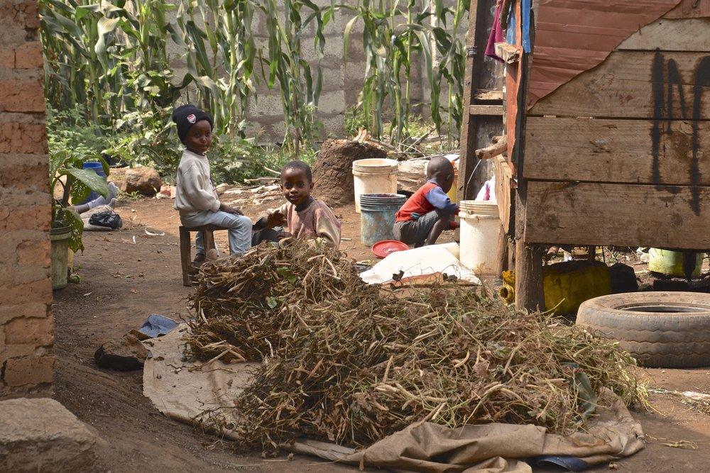 kids doing chores.jpg