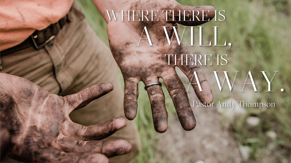 when-theres-a-will-theres-a-way_WHERE THERE IS A WILL... - SCREEN.jpg