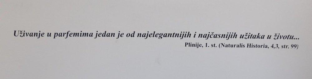 Plinij.jpg