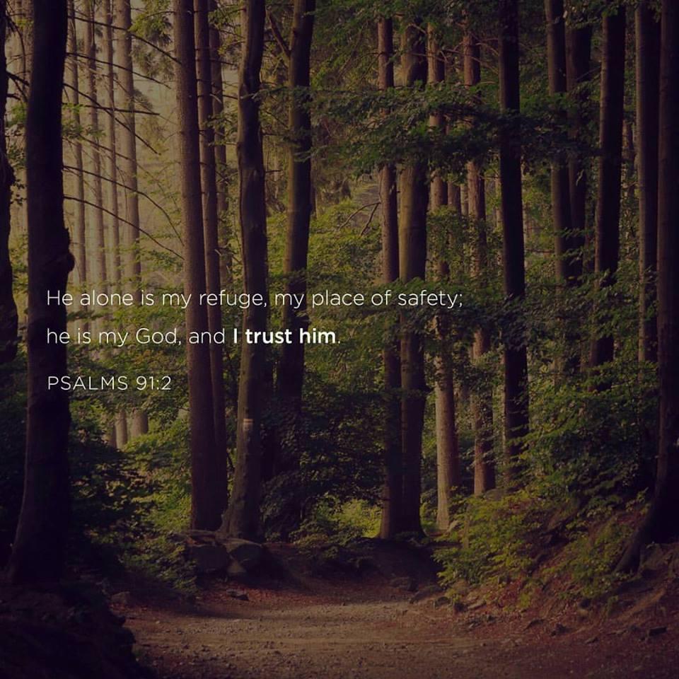 he is my refuge.jpg