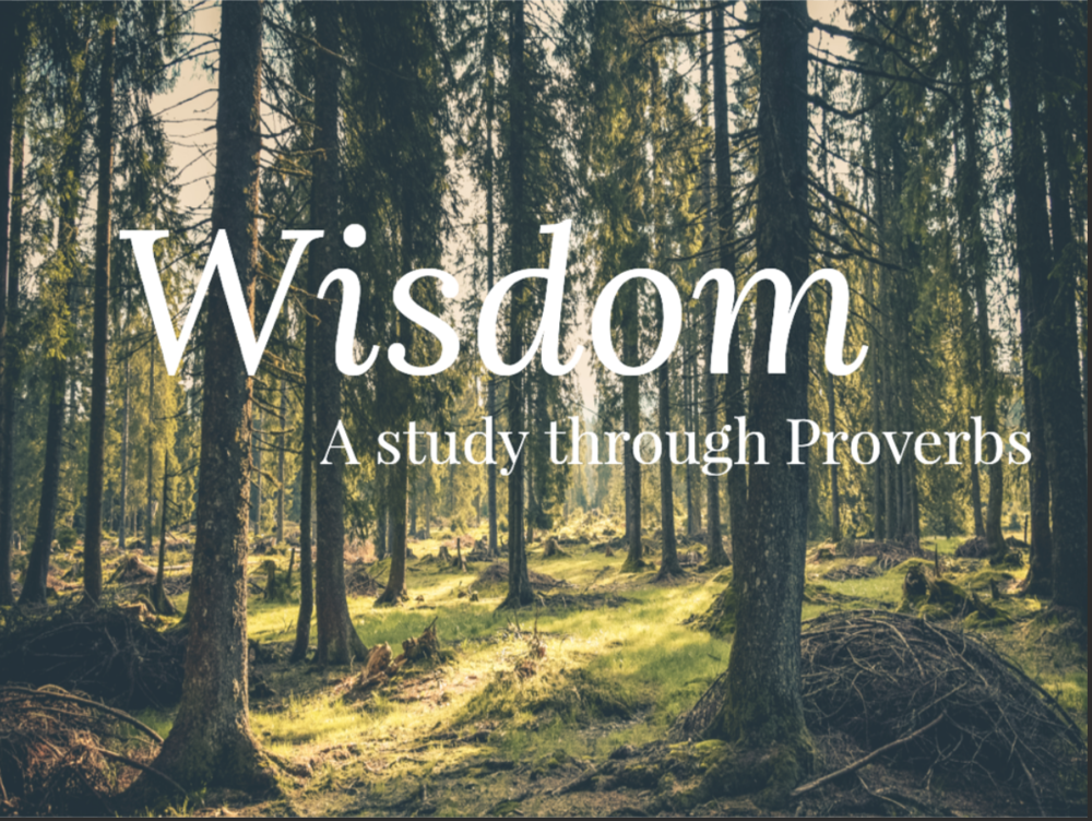 Wisdom: A Study through Proverbs -