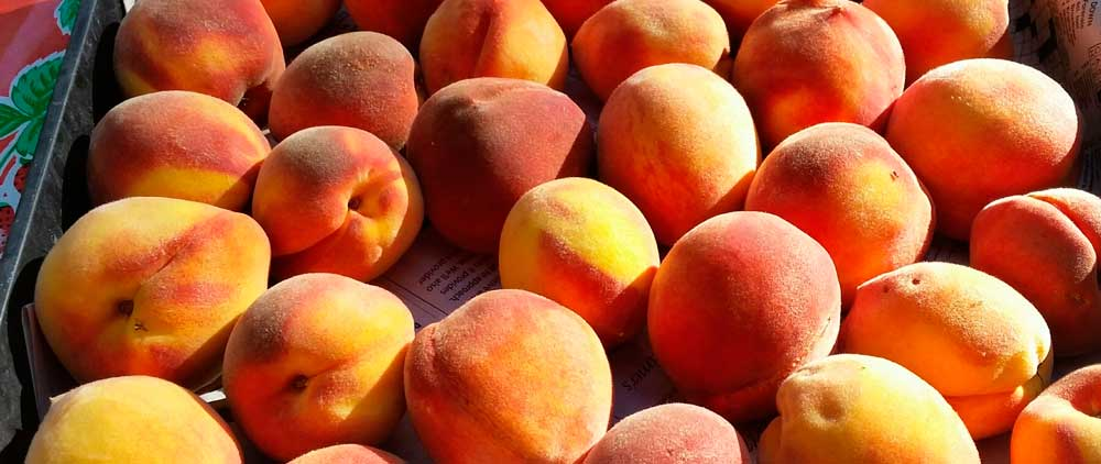 Got Extra Fruit? - Donate your extra fruit to help make the pies to help the children of Kare Crisis Nursery. Contact us and we will pick it up!