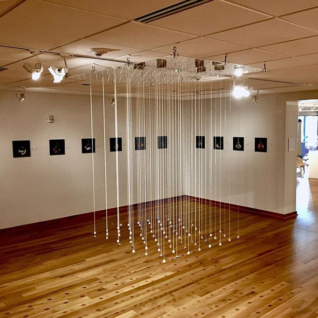 Installation view at @calvincollege , April 2018