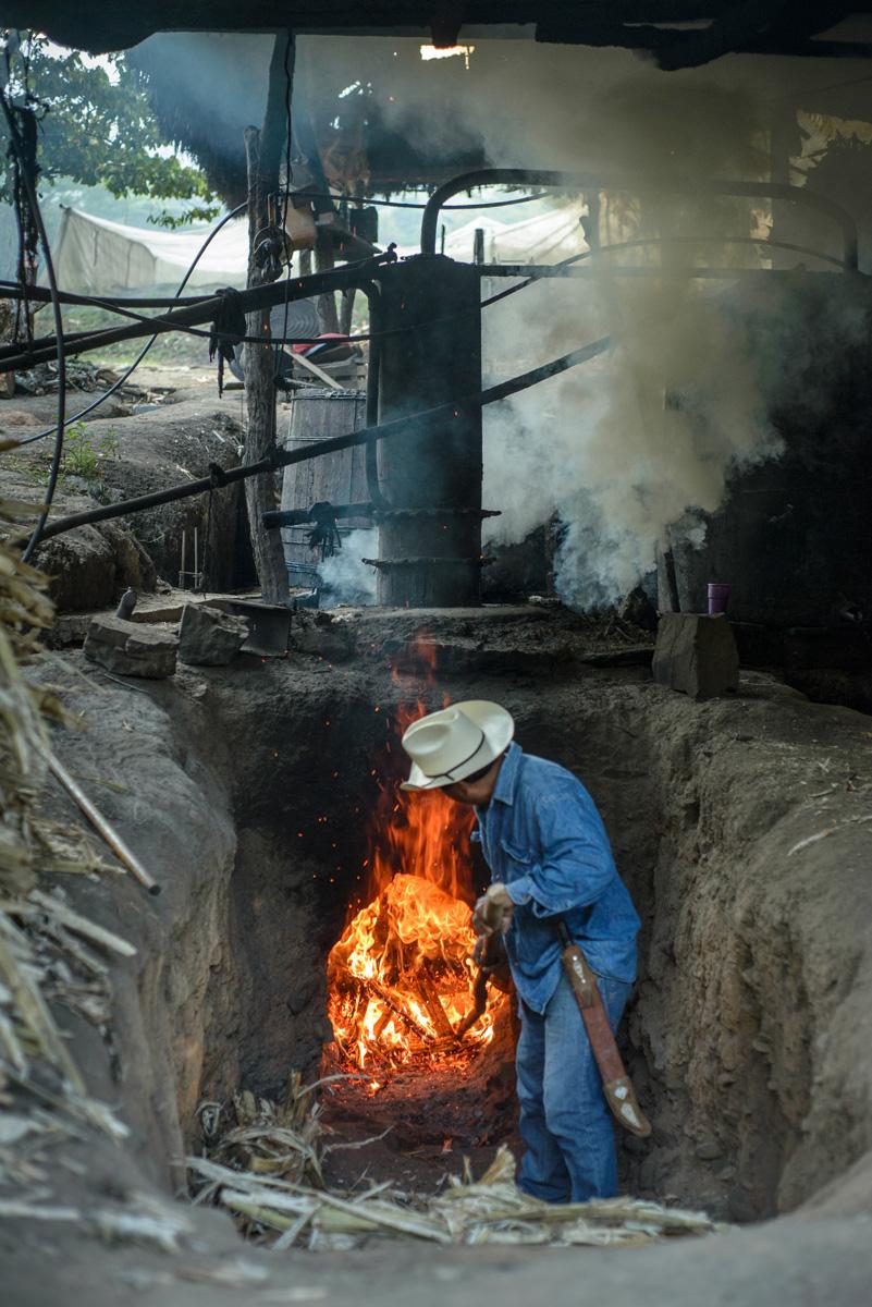 Distillation Rum Paranubes Oaxaca.jpg