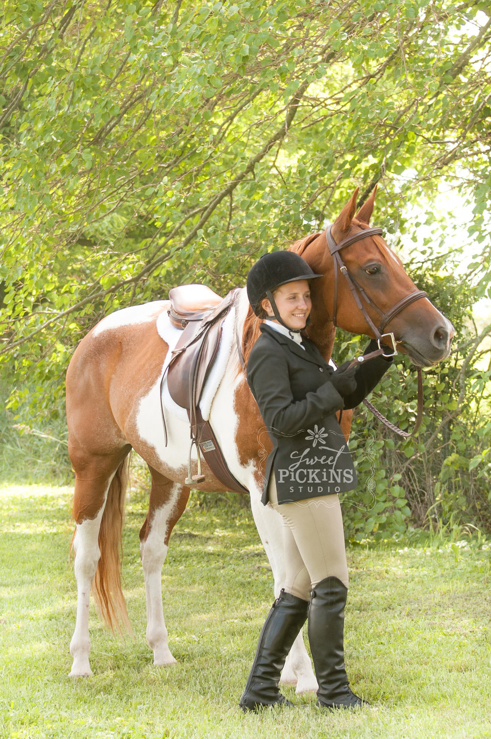 Equestrian Horse Portrait Photographer | Sweet Pickins Studio of Peru, IN