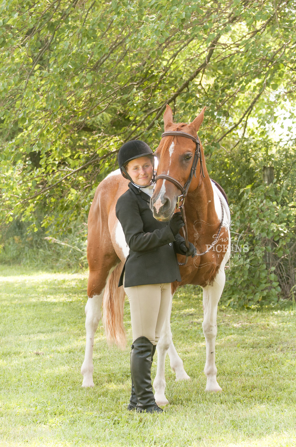Equestrian Horse Portrait Photography Session | Sweet Pickins Studio