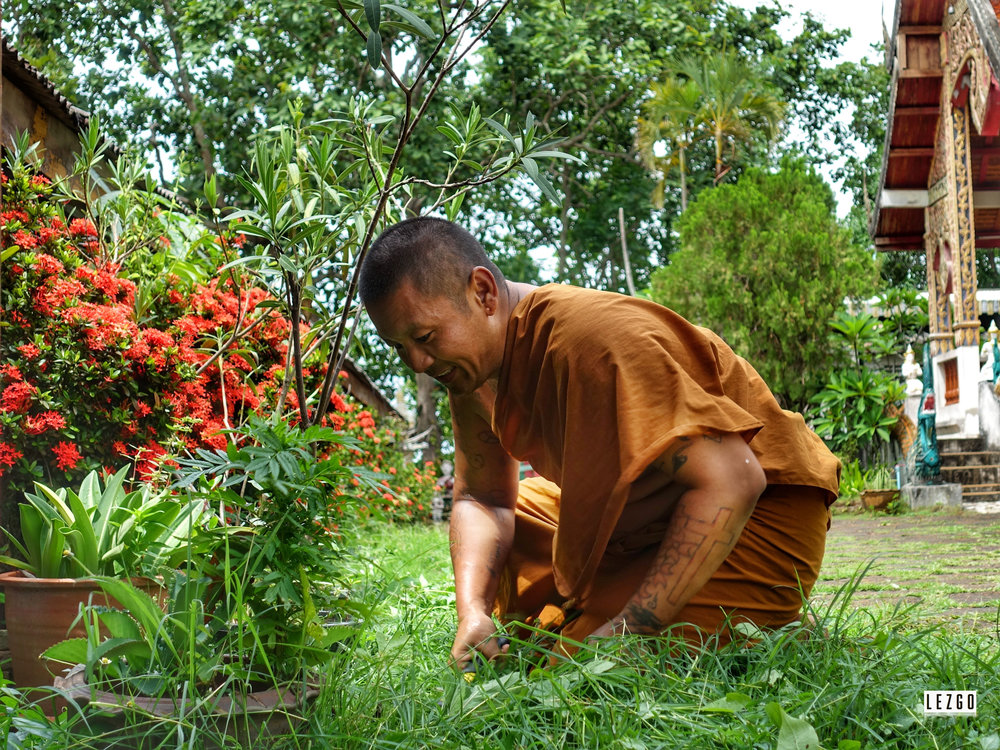 Monk gardening at Wat Phra That Mae Yen (Temple on the hill), Pai, Thailand May 2017