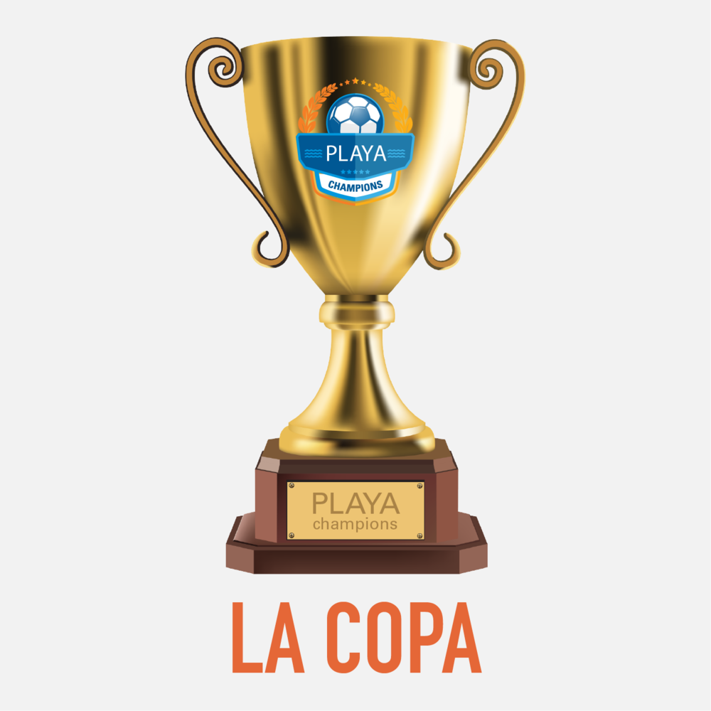 Playa Champions La Copa  Playa Champions Soccer League For Adults In Los Angeles