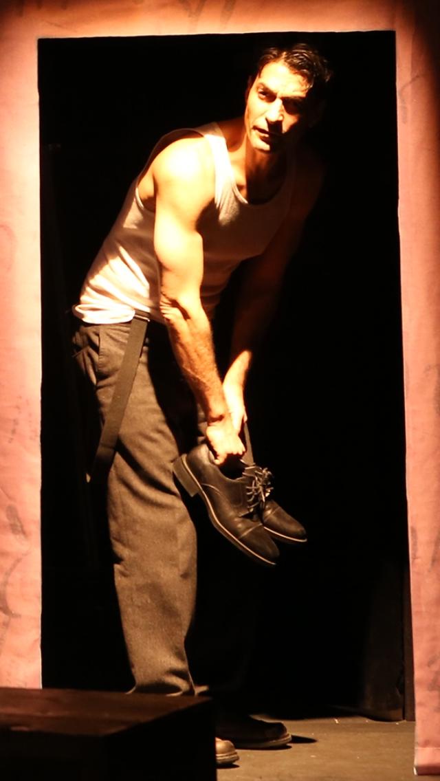 Schub as Avraham 'Yair' Stern.