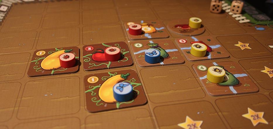 garden-dice.jpg