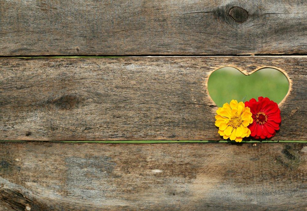 heart-flowers-board_Pexils-158635.jpeg