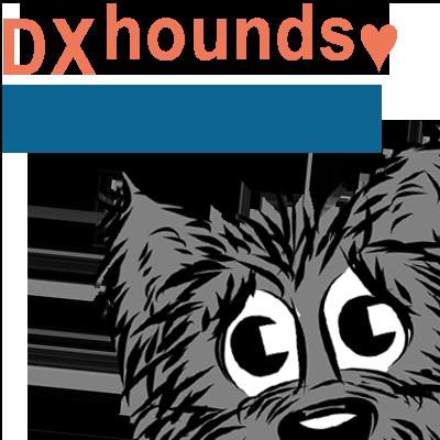 DXhoundDXnews 250px.png