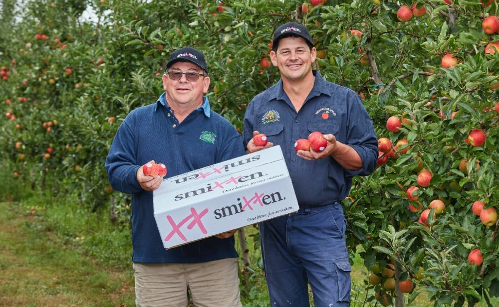 Glynn and Brad Fankhauser in their Drouin Orchards in Victoria with the specially grown Smitten apples, that were a huge marketing success for Valentine's Day.