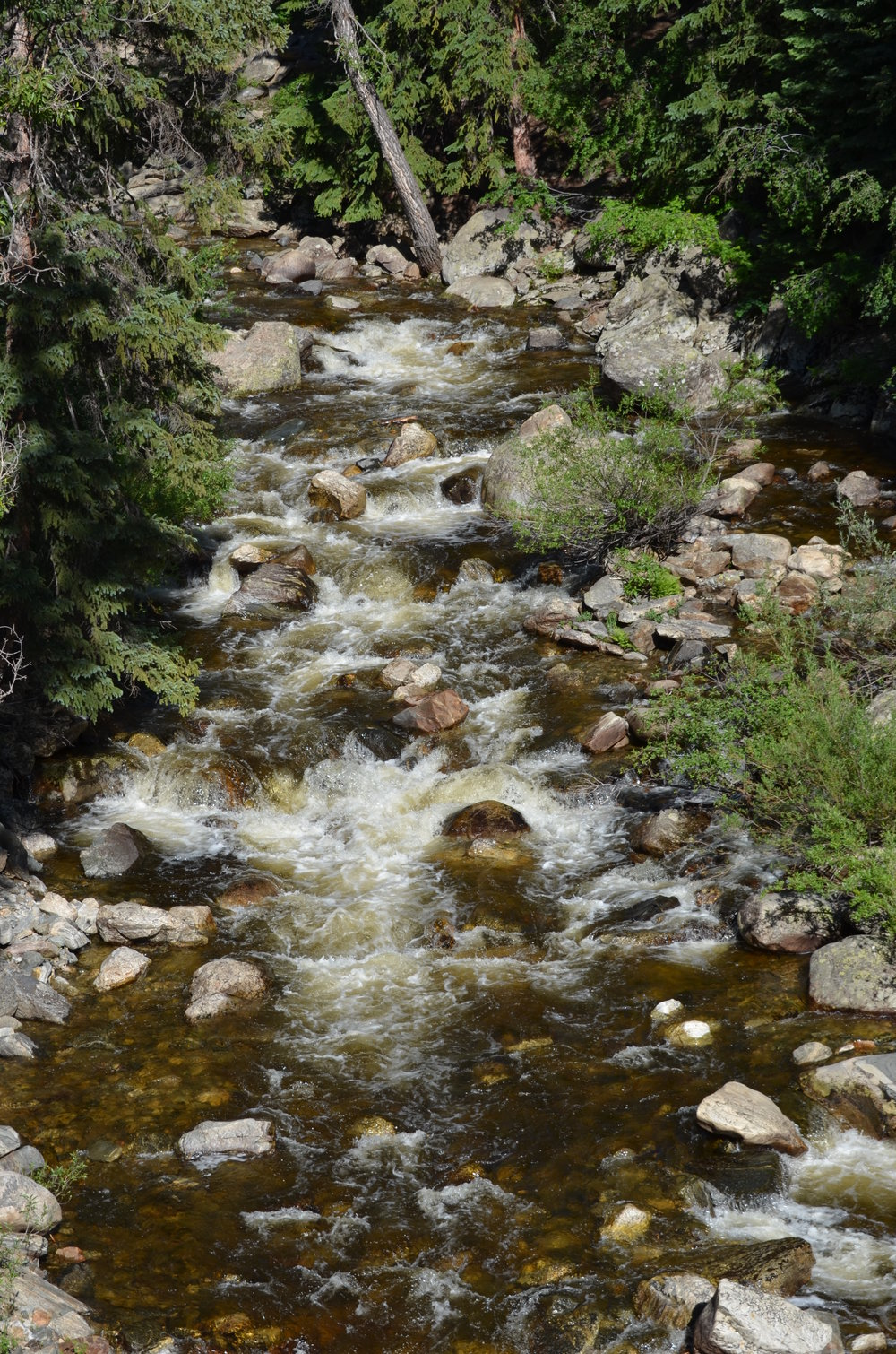colorado stream.jpg