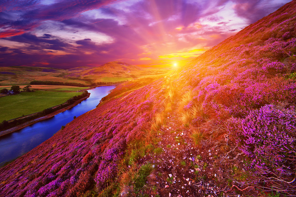 Sunset in the Scottish Highlands. Stock photo.