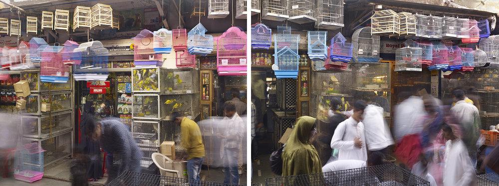 Bird Cages, Crawford Market, Mumbai, India - 2013.jpg