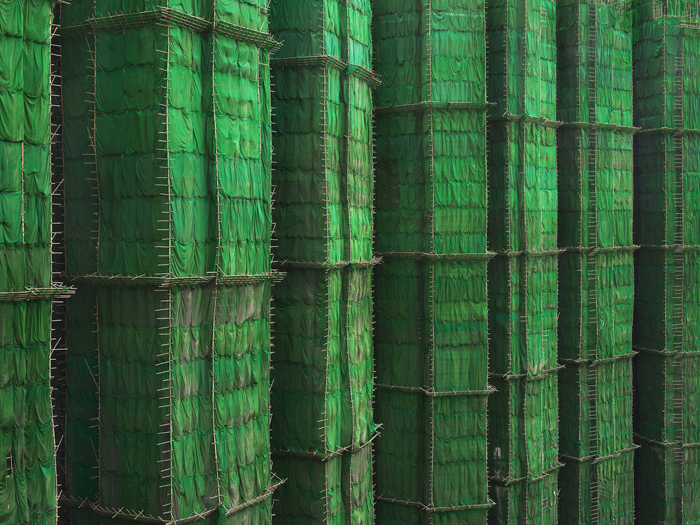 Green Cocoon Walls, Hong Kong - 2010 copy.jpg