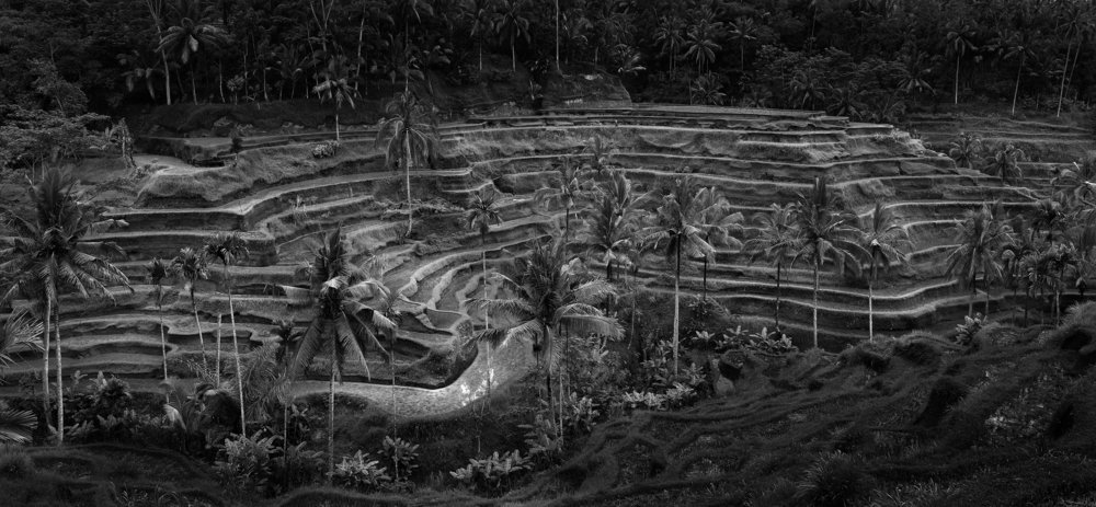 Ayung Terraces, Bali, Indonesia - 2006 copy.jpg