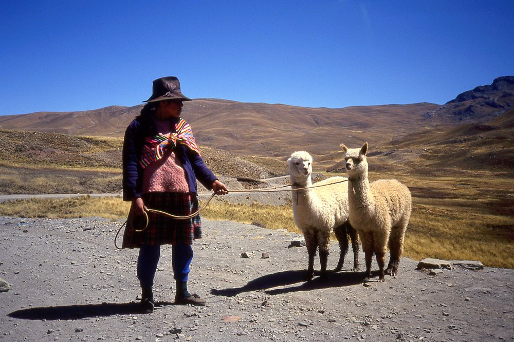 Andean_woman_with_alpaca.jpg