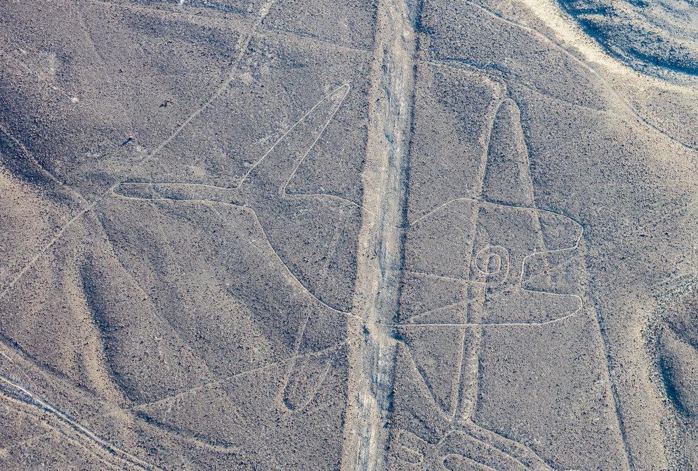 Líneas_de_Nazca,_Nazca,_Perú,_2015-07-29,_DD_39.JPG