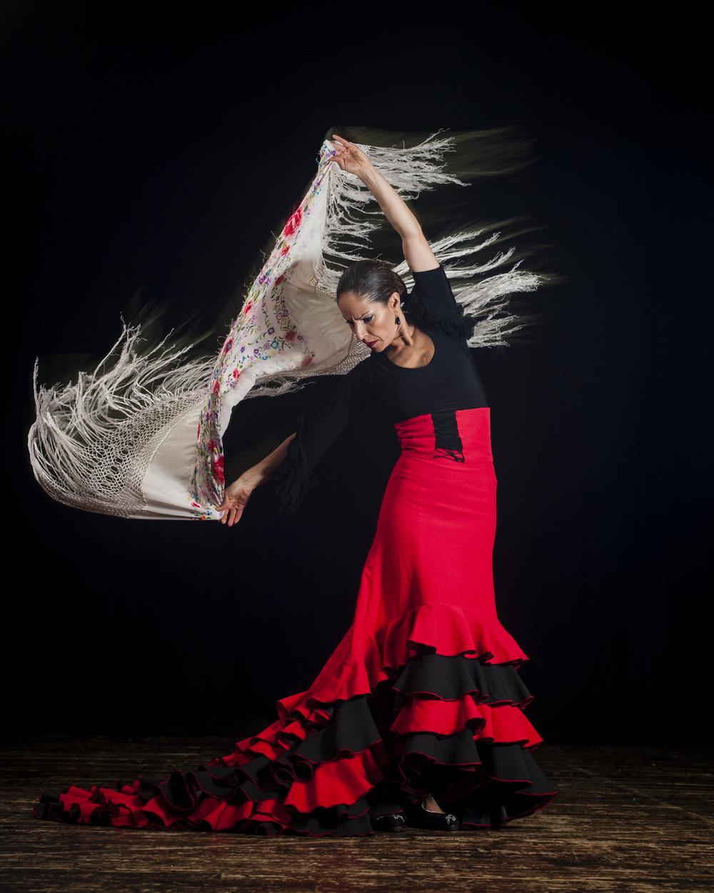Flamenco_dancer_3467.jpg