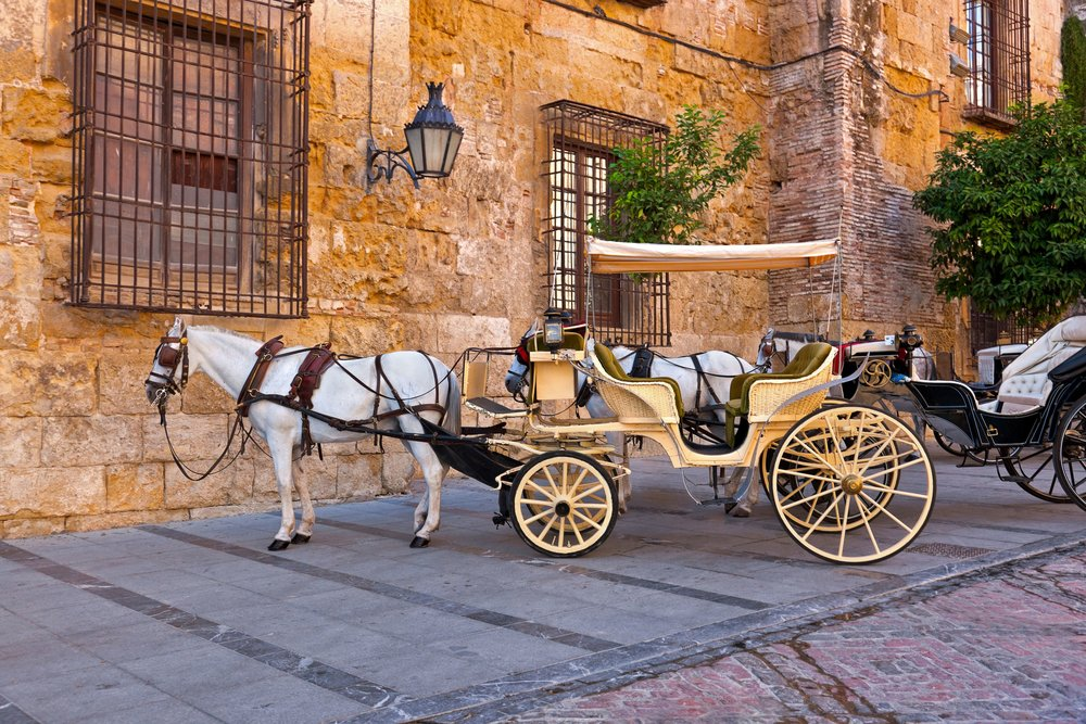 Traditional Horse and Cart at Cordoba Spain - travel background.jpg