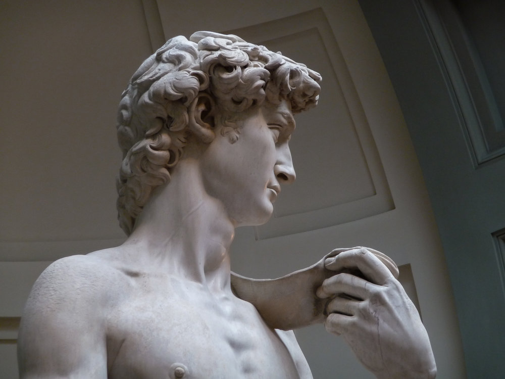 'David'_by_Michelangelo_JBU14.JPG