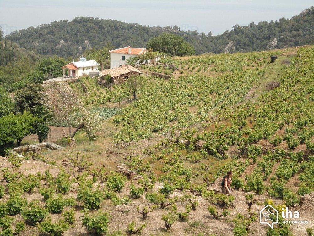 Short-term-rentals-Agios-konstantinos-Valeondades_25.jpeg