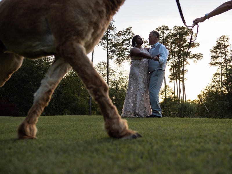 VisualRituals_ChapelHill_Wedding_41.jpg