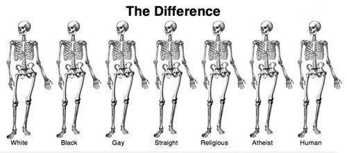 We're all the same on the inside. Except for big-boned girls.