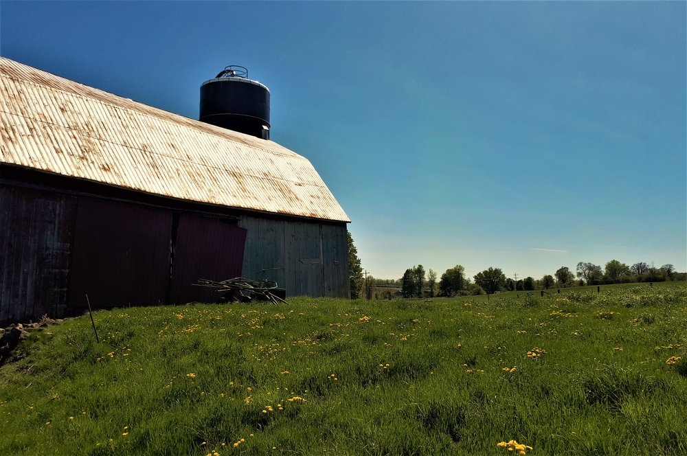 The old dairy barn, with neighbour Jim's tedder.