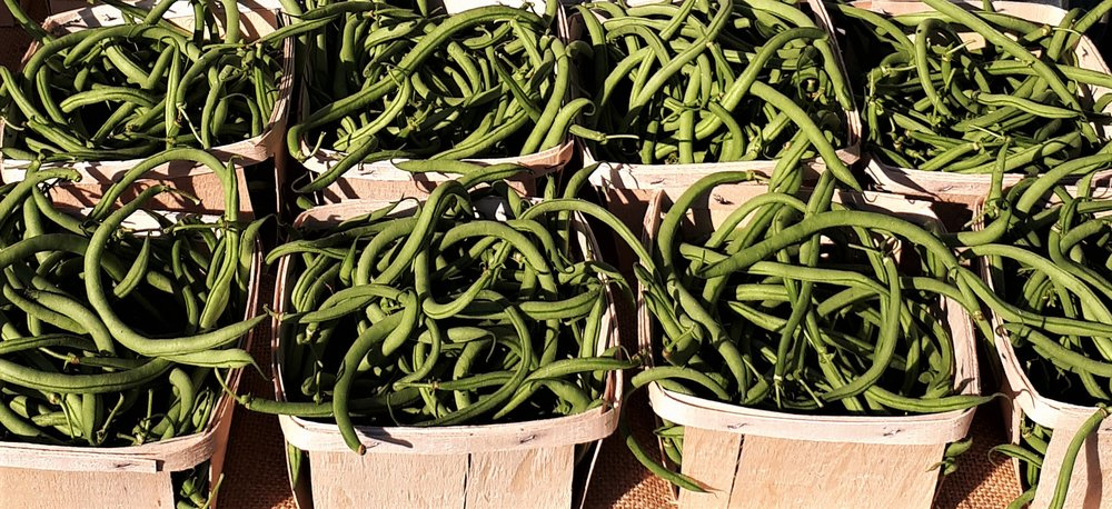 Green beans for sale at Beechwood Market.