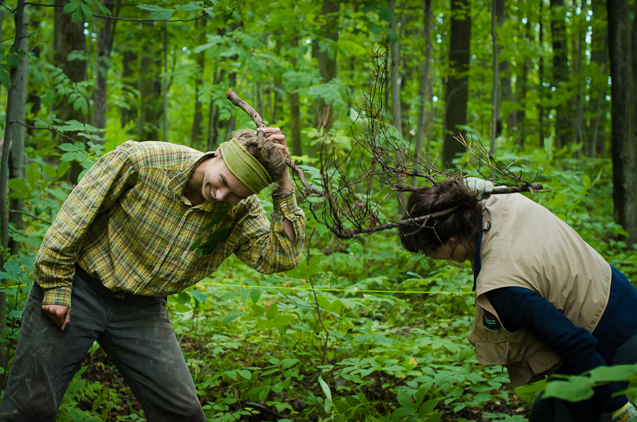 McGill-scientists-fighting-forest-field-photo-research-montreal-photographer