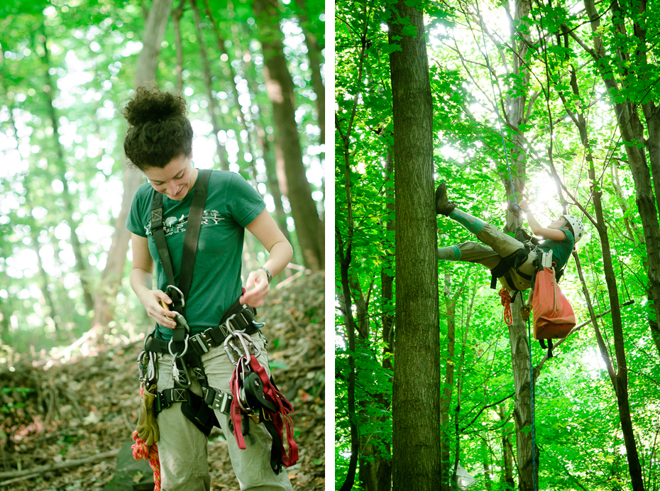 tree-climbing-scientist-dorothy maguire-mont-st-hilaire-montreal-field-research-photographer