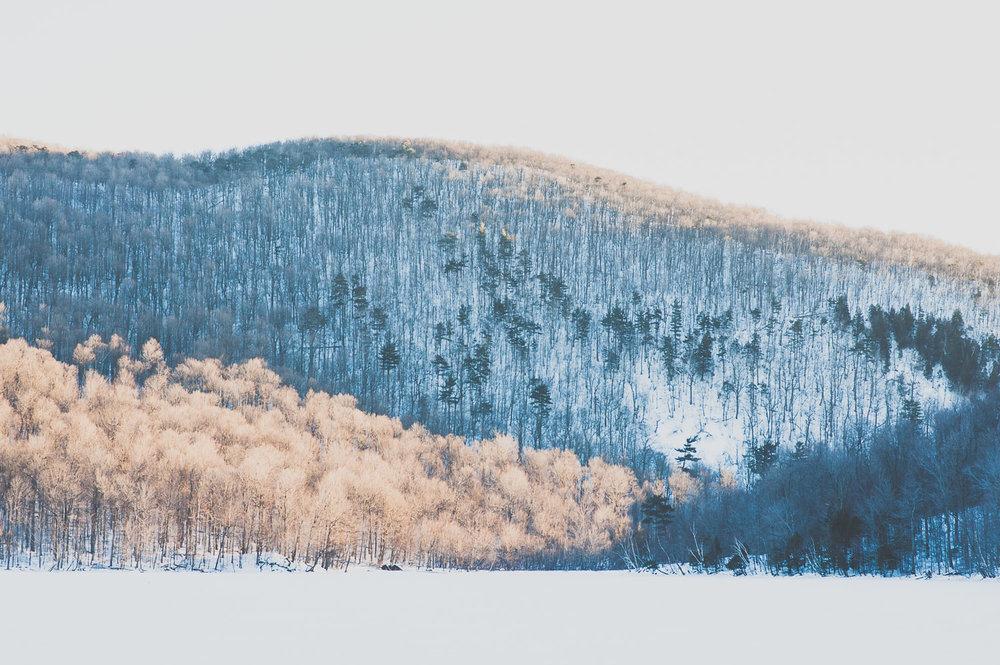 photo-mont-st-hilaire-winter