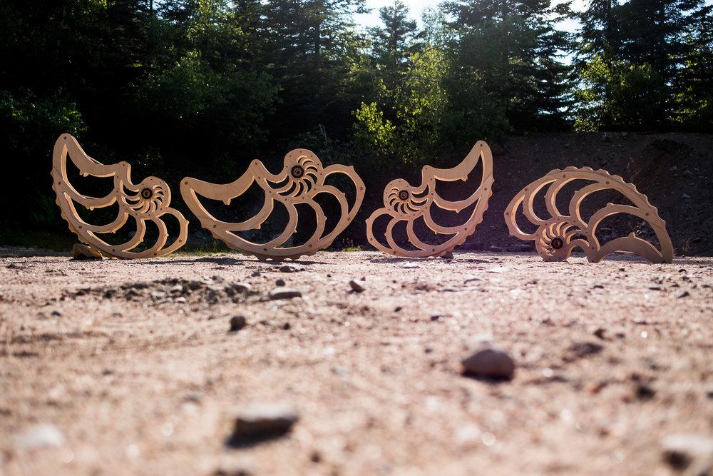sculptures-shells-wooden