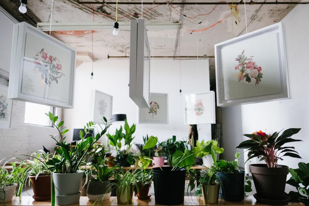 biotopia-exhibition-gallery-space-in-luminarium-janna-yotte