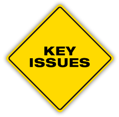 PMAT-logo-KEY-ISSUES.png