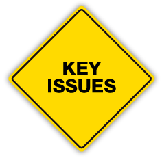 PMAT-logo-KEY-ISSUES-2.png