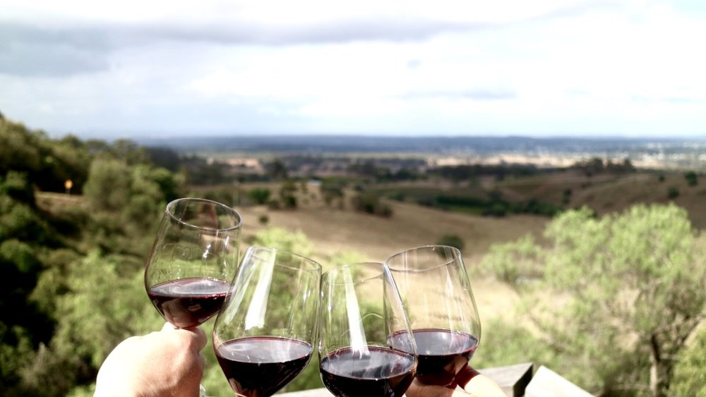 Count me in for wine tasting experiences every time.