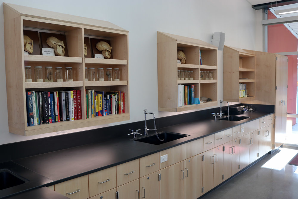 CHEMICAL RESISTANT WOOD CASEWORK AND EPOXY COUNTERTOPS