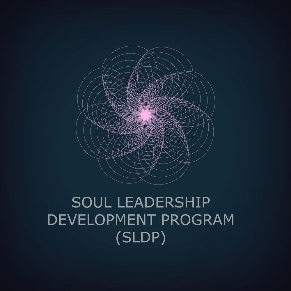 Soul Leadership Development Program.jpg